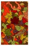Autumn Leaves Fotografia Stock