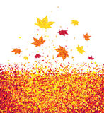 Autumn Leaves Images libres de droits