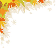Autumn leaves. Background with autumn leaves,  design element Royalty Free Stock Images