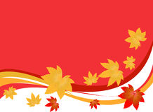 Autumn leaves. Illustration of autumn leaves on red background Royalty Free Stock Images