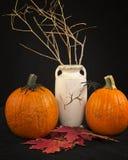Autumn Leaves, abóboras e um vaso Imagens de Stock
