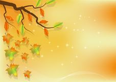 Autumn leaves for abstract background. Autumn leaves abstract background Stock Illustration