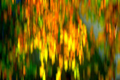 Autumn leaves abstract background Stock Image