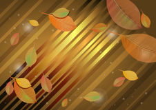Autumn leaves abstract background. Vector illustration Stock Photography