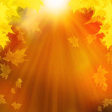 Autumn Leaves, abstrakter Autumn Background Illustration Stockfoto