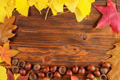 Autumn leaves and acorn frame background Royalty Free Stock Photos