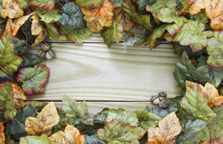 Autumn leaves and acorns border wood sign Stock Photo