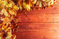 Autumn leaves and acorns on rustic wooden background. Fall background with copy space. stock image