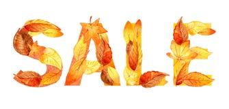 Autumn Leaves Acquerello di vendita di autunno illustrazione di stock