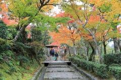 Autumn Leaves Of Adashino Nenbutsu-ji Royalty Free Stock Photo
