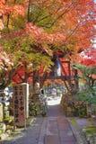 Autumn Leaves Of Adashino Nenbutsu-ji Royalty Free Stock Images