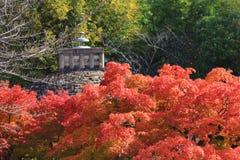 Autumn Leaves Of Adashino Nenbutsu-ji Lizenzfreie Stockfotos