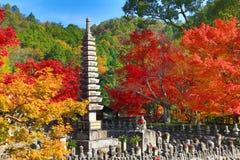 Autumn Leaves Of Adashino Nenbutsu-ji av Buddhastatyn royaltyfria bilder