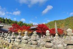 Autumn Leaves Of Adashino Nenbutsu-ji av Buddhastatyn royaltyfri foto