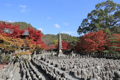Autumn Leaves Of Adashino Nenbutsu-ji of Buddha statue Stock Photo