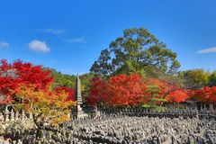 Autumn Leaves Of Adashino Nenbutsu-ji of Buddha statue Stock Image