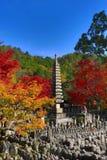 Autumn Leaves Of Adashino Nenbutsu-ji von Buddha-Statue Stockbild