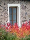 Autumn Leaves Against a Decorative Stone Wall and Window Background Royalty Free Stock Images