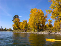 AUTUMN LEAVES AGAINST THE SKY ON THE RIVER. TAKEN FROM A BOAT WITH AN OAR IN THE FOREGROUND, A VIEW OF AUTUMN TREES AND A BLUE SKY WITH WISPY CLOUDS stock images