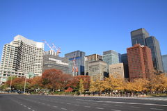 Autumn leaves along Miyuki avenue Stock Photo