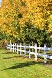 Autumn leaves along white fence Royalty Free Stock Photo