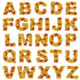 Autumn leaves alphabet Stock Images