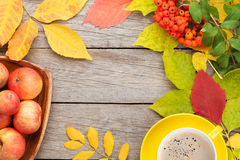 Autumn leaves, apple fruits and coffee cup Stock Image