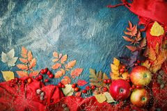 Autumn leaves, apples and berries on a dark background. Autumn background with copy space. Stock Image