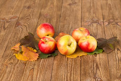Autumn leaves and apples Stock Photography