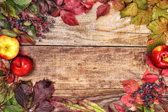 Autumn leaves and apples on old wood Royalty Free Stock Photo