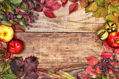 Autumn leaves and apples on old wood Stock Images