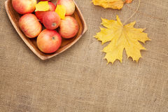 Autumn leaves and apples over burlap Stock Image