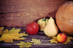 Autumn leaves, apples and pumpkins Stock Images