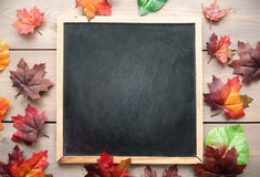 Autumn leaves around a blackboard Royalty Free Stock Photo