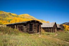 Autumn leaves around ghost town of Ashcroft Royalty Free Stock Image