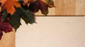 Autumn Leaves arranjou em um canto contra um fundo de madeira imagens de stock