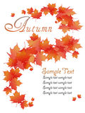 Autumn Leaves astratto Immagini Stock