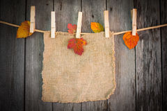 Autumn leaves attach to rope with clothes pins Stock Photo