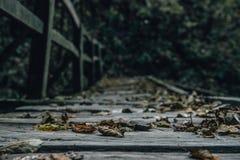 Autumn Leaves auf der alten hölzernen Brücke Lizenzfreie Stockfotos