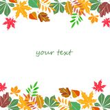 Autumn leaves. Autumn abstract vector background. Orange leaves Stock Image