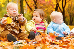 Autumn leaves and babies Stock Photos