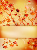 Autumn with leaves Back to school. EPS 10 Royalty Free Stock Photography