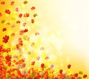 Autumn Leaves Background Illustration Stock