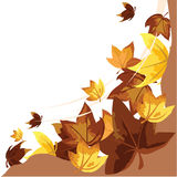 Autumn leaves background. For fall, website, banner, seasons and others Stock Photos