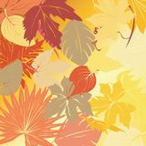 Autumn leaves background. Background with autumn leaves, art illustration Stock Images