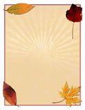 Autumn leaves background. A background design with autumn or fall leaves Stock Photos