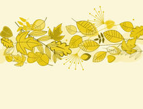 Autumn leaves background. For fall or thanksgiving design Royalty Free Stock Image