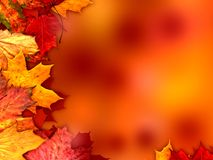 Autumn leaves background. Brown autumn leaves background illustration Stock Illustration