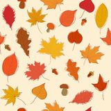 Autumn leaves background. Autumn seamless pattern with leaves, acorns and mushrooms Stock Illustration