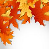 Autumn Leaves Background. illustration de vecteur
